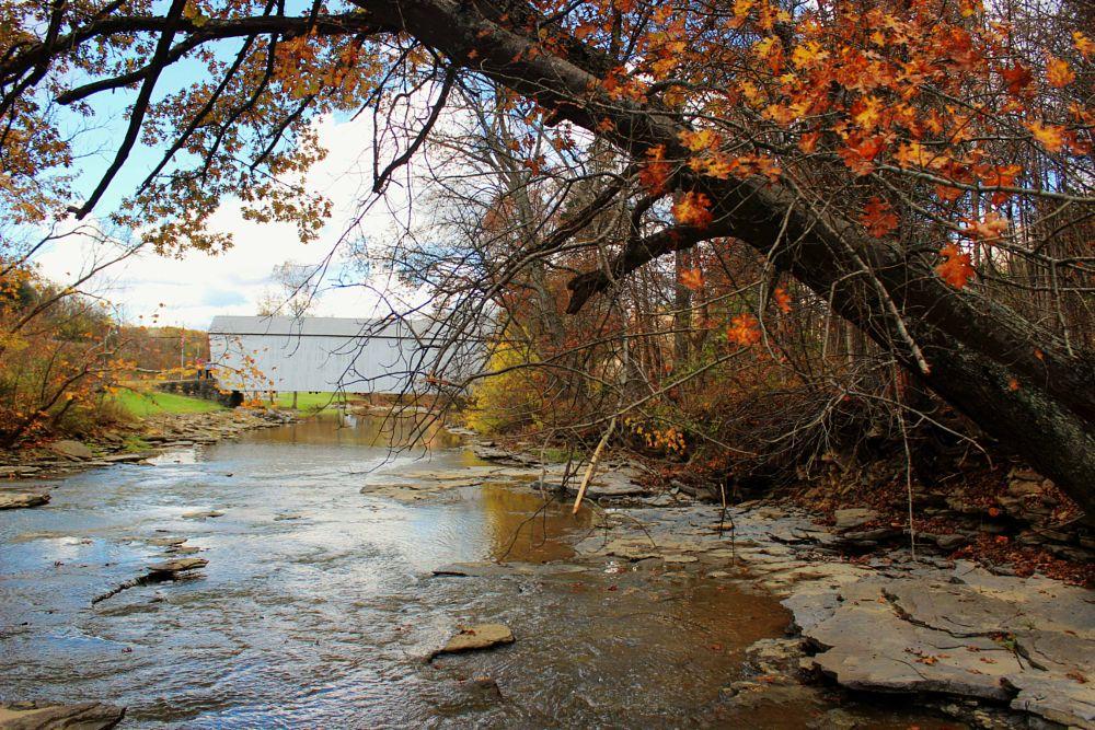 Photo in Landscape #covered bridge #autumn #creek