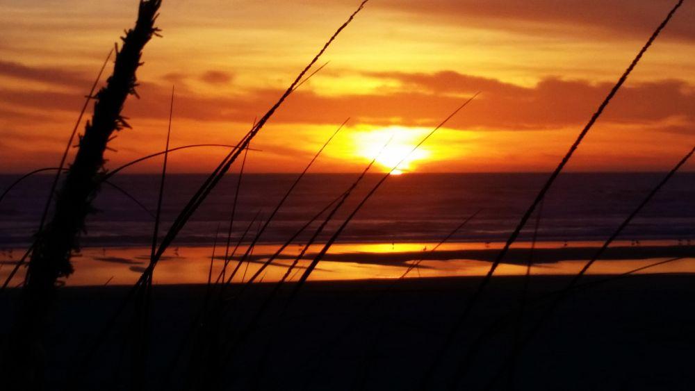Photo in Sea and Sand #oregon coast #water #sun #sand