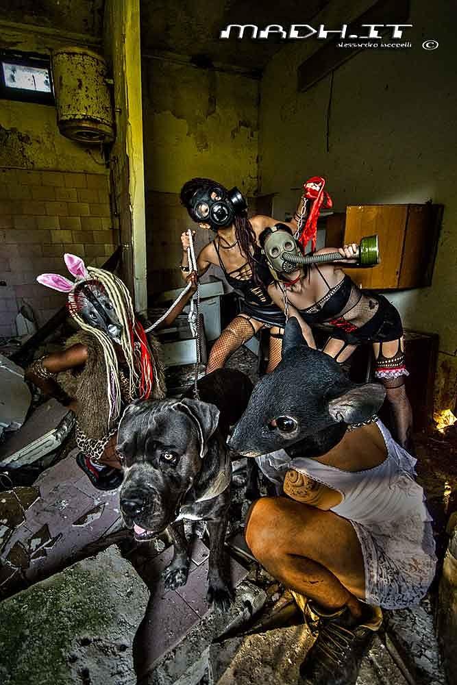 Photo in Random #lunatic circus #animal clan #crazy
