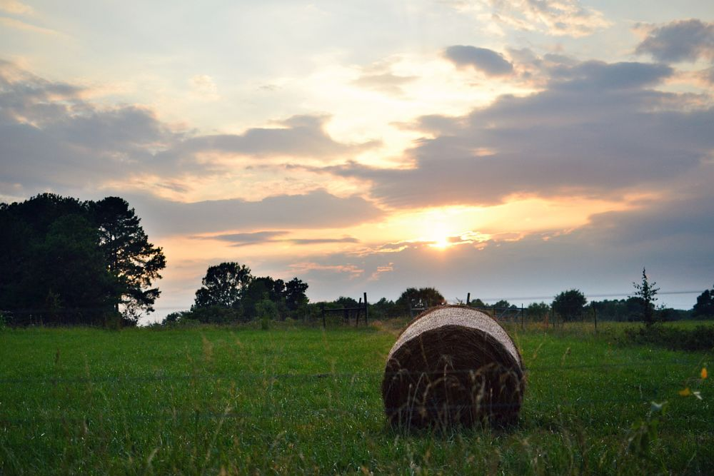 Photo in Landscape #sunset #hay #hay bail #field #country #landscape