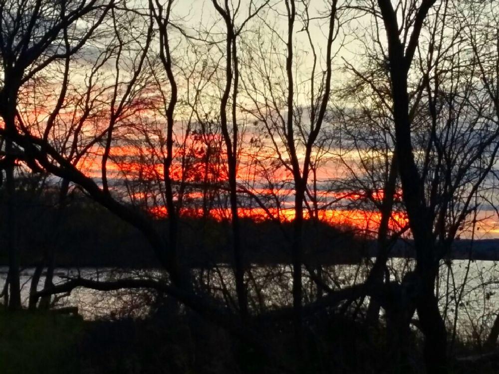 Photo in Nature #sun sunset bastrop state park