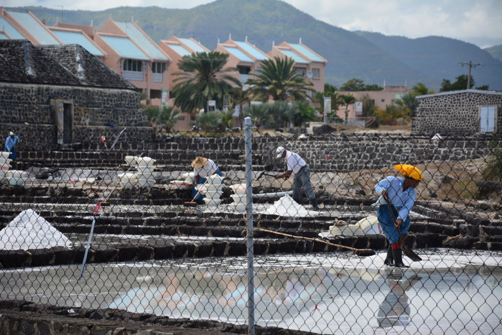 Photo in Street Photography #mauritius #salt #industry #salt factory #labour #people
