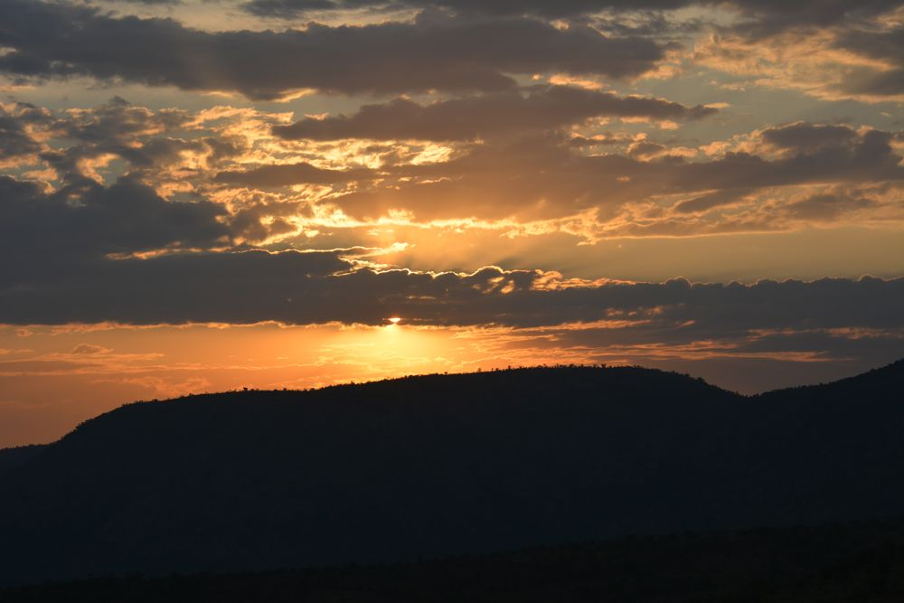 Photo in Nature #sunset #forest #south africa #pilanesburg