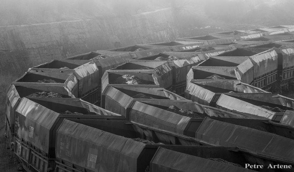 Photo in Black and White #black and white #train #railways #fog #depot