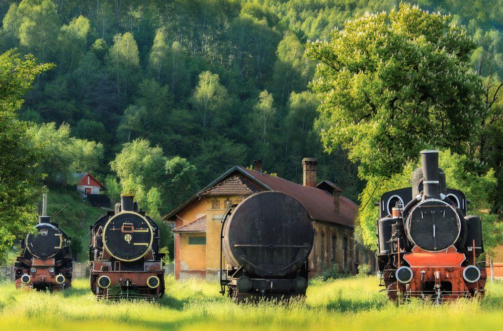 Photo in Industrial #engine #depot #locomotive #steamengine #train