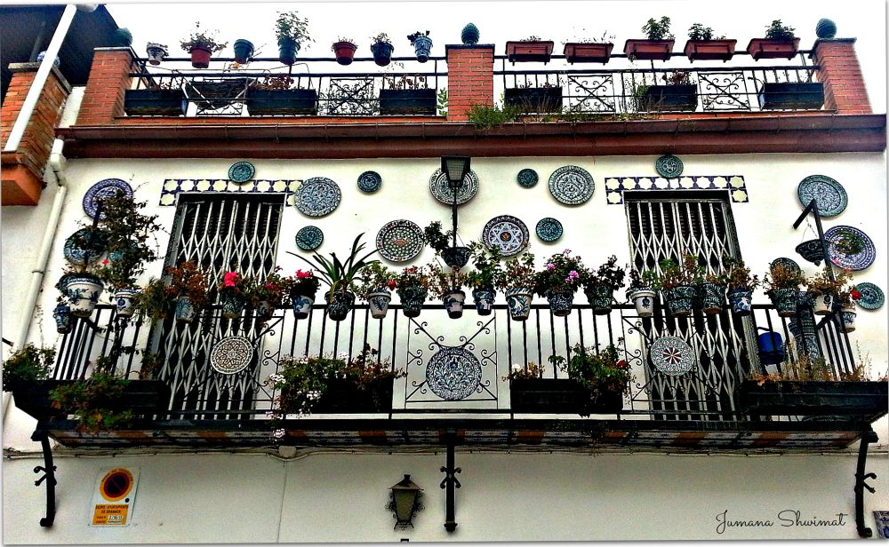 Photo in Random #beauty #balcon #nature #flowers #granada #spain