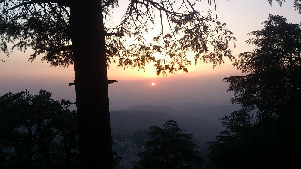 Photo in Nature #sunset #shimla #woods