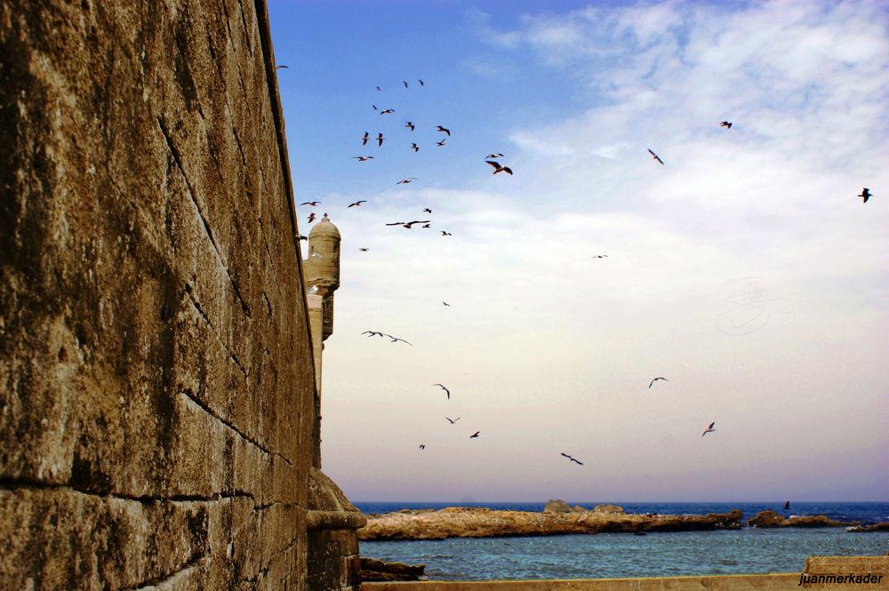 Photo in Random #essaouira cityscape landsca #mar #sea #océano #ocean #africa