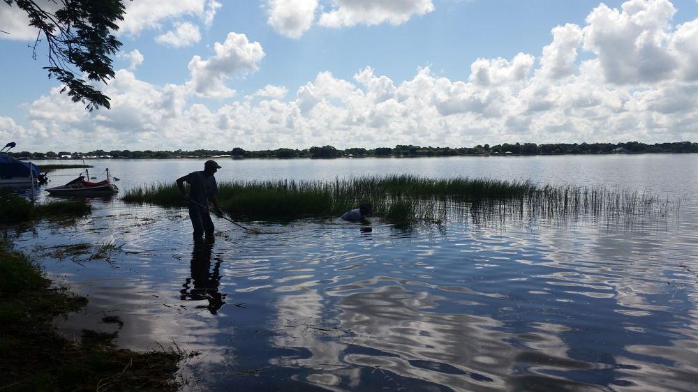 Photo in People #lake #grassy lake #work #clouds #morning #florida #working #people