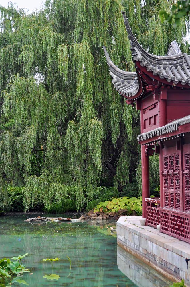 Photo in Random #china #chinese #garden #chinese architecture