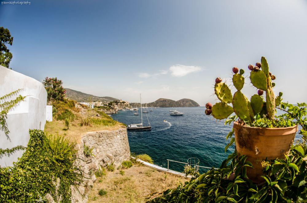 Photo in Sea and Sand #eolie #lipari #sicilia #mare #fichi-d'india #estate