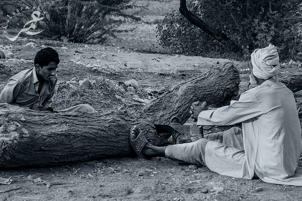 Photo in People #b&w #people #wood #hard work #red sand #photographer #nature #smile