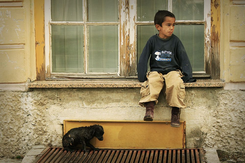 Photo in Street Photography #street #boy #dog