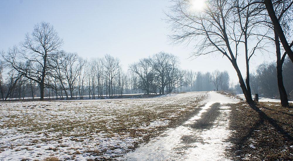Photo in Landscape #winter #cold #river #meadows #odra #ostrava