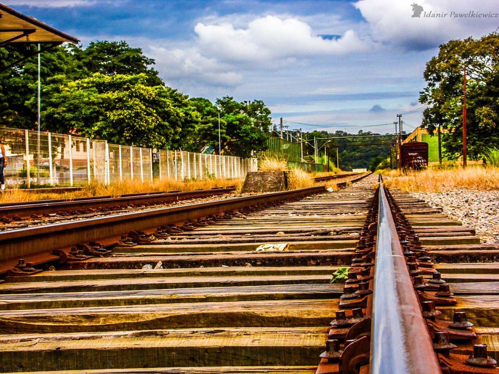Photo in Random #train #trem #trilhos