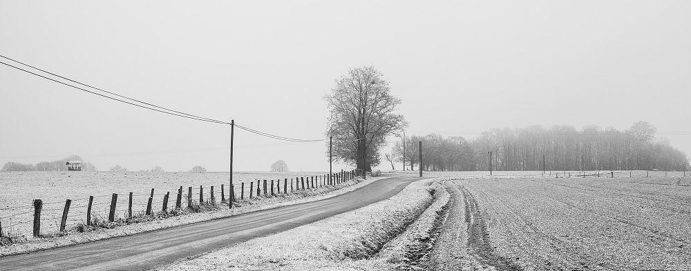 Photo in Landscape #winter #landscape #snow #france #marionlebert #contryside #trees #fields #road #snowscape #panorama #moulay #pays de la loire #black and white #wintercontest #mayenne