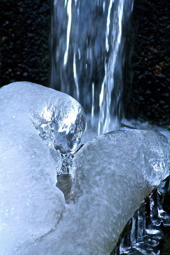 Photo in Random #ice