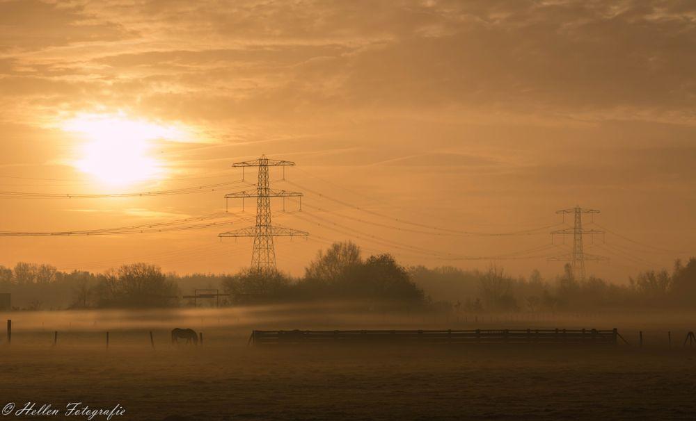 Photo in Nature #fog #misty #early morning #stadskanaal #pagedal #groningen #canon eos70d #hellen de grijs