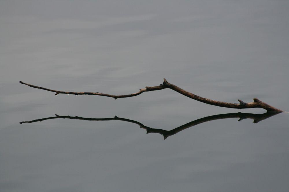 Photo in Fine Art #spiegelbild