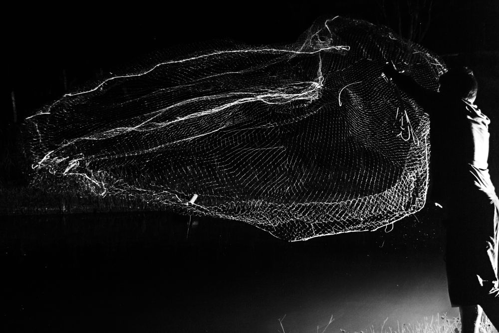 Photo in Black and White #fishery #flue #fish #night