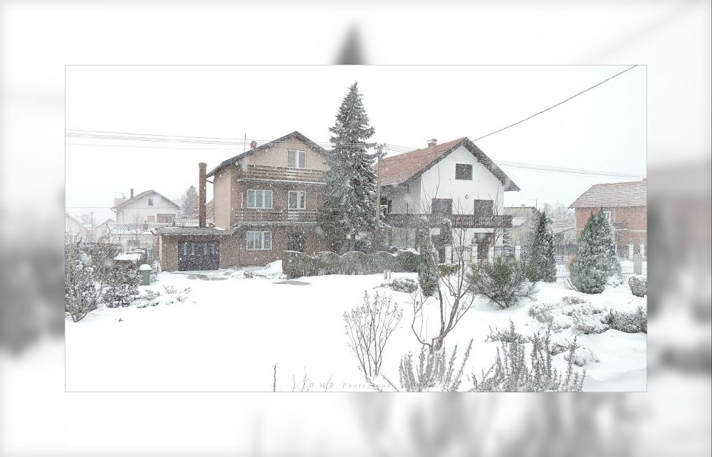 Photo in Still Life #snow day ... ~ view from windo #snow #winter-jan 03/2016 #still life