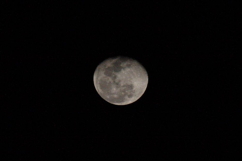 Photo in Nature #moon #night #riu #jamaica #caribbean