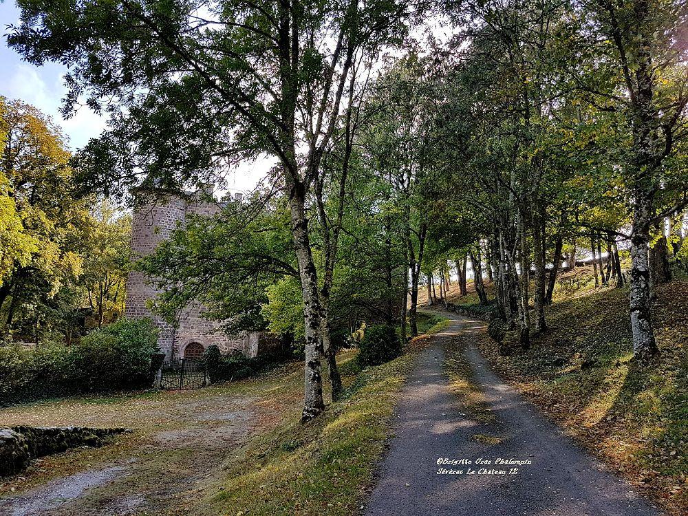 Photo in Landscape #château automne nature pays