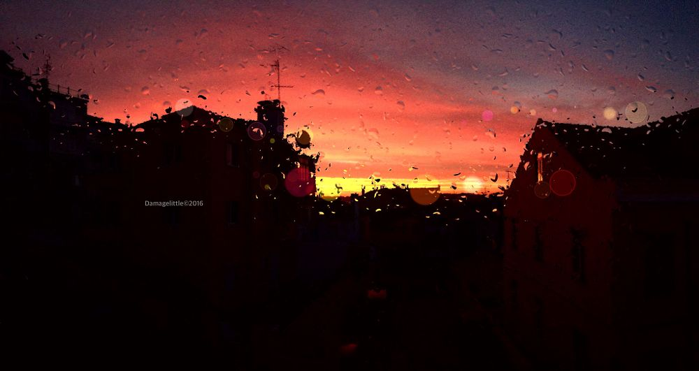 Photo in Random #sunrise #morning #storm #rain #light #drops
