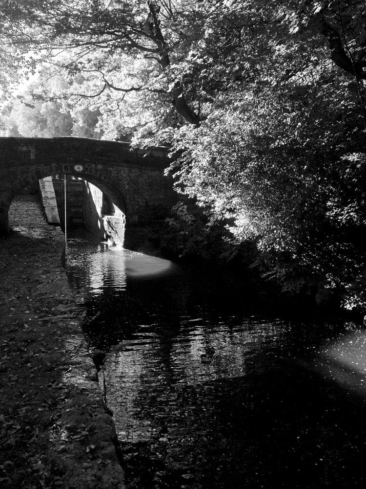 Photo in Landscape #huddersfield narrow canal #marsden #marsden huddersfield #canals