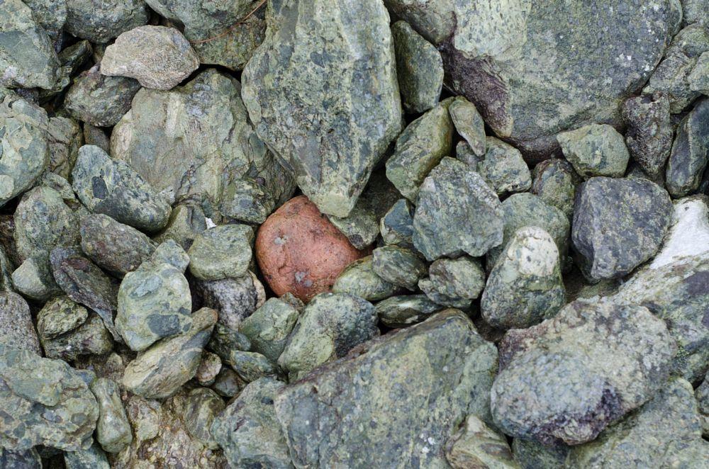 Photo in Abstract #potato #stones #shingle