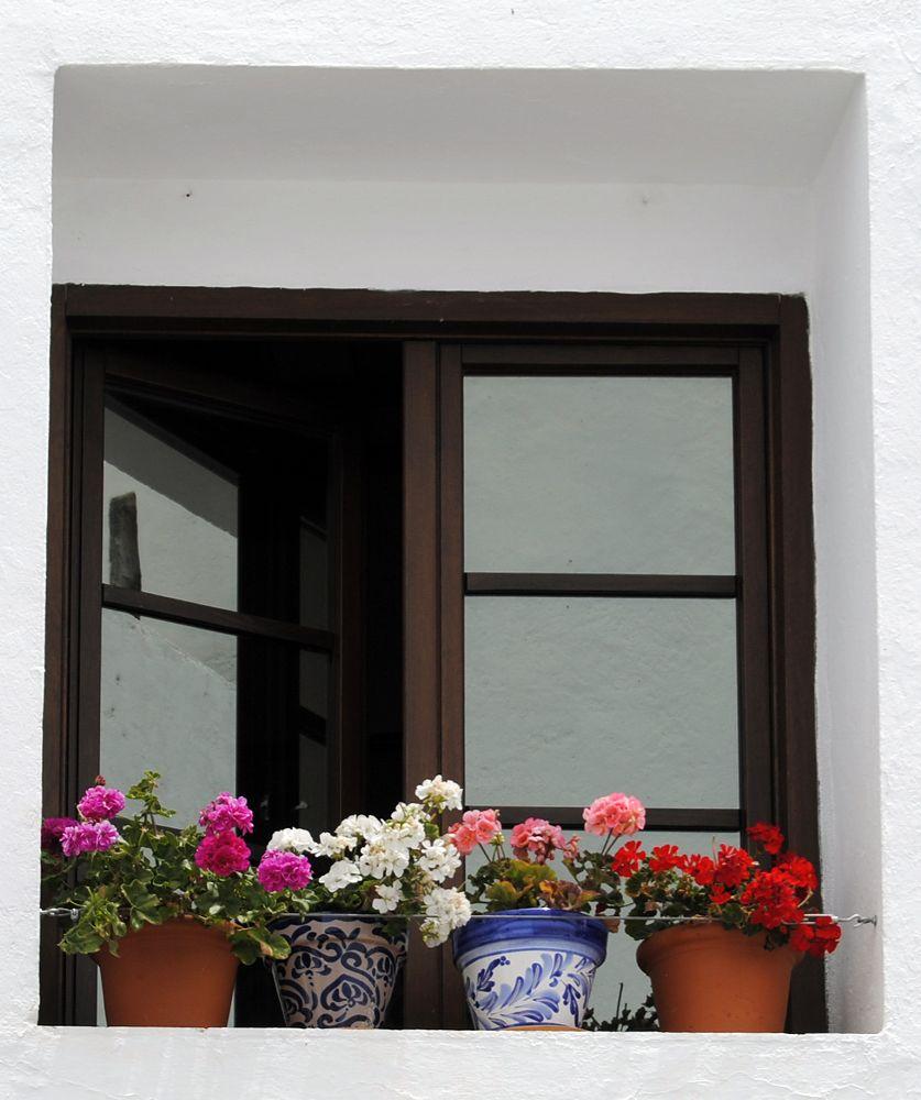 Photo in Urban #windows