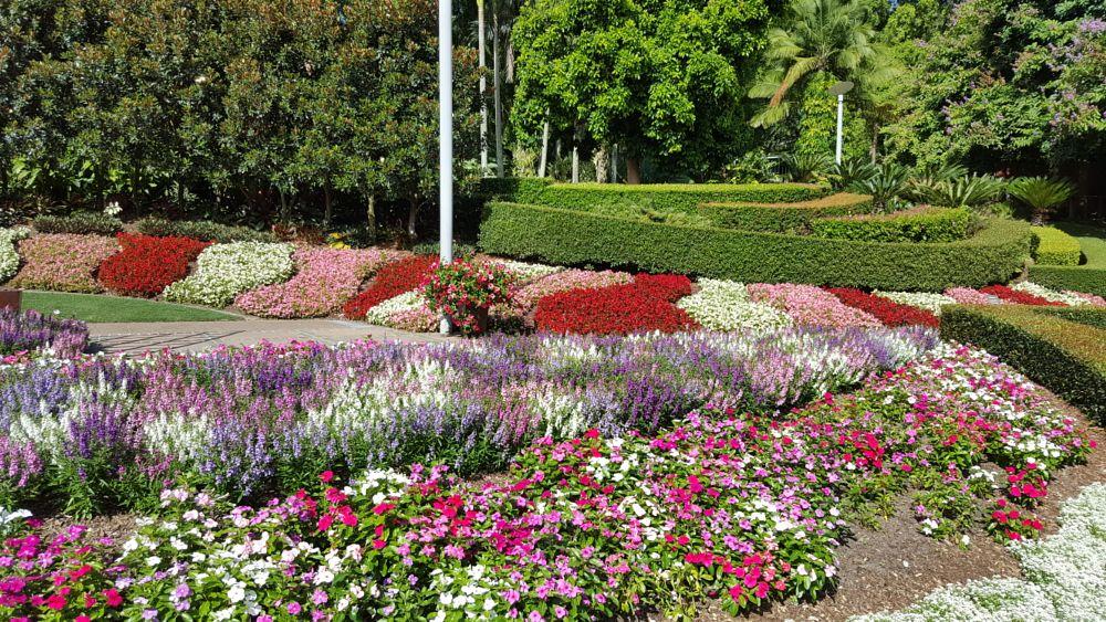Photo in Landscape #heeps of flowers #brisbane #australia