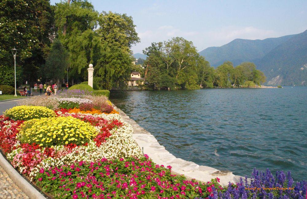 Photo in Travel #lake #lake lugano switzerland #flowers