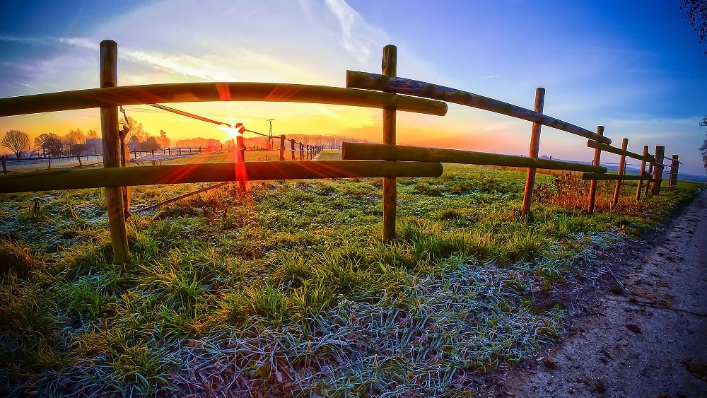 Photo in Rural #sun #sunrise #sunset #rural #country #field #winter #frost #frosty #frozen #freezing #landscape #cold #neukirchen-vluyn #germany #hdr #panasonic #lumix #g6 #walimex #samyang #rokinon #fisheye