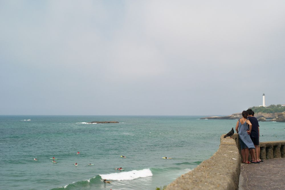 Photo in Landscape #people #sea #dove #summer #holidays #biarritz