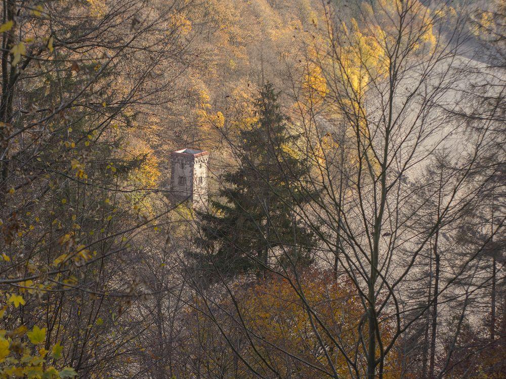 Photo in Landscape #tower #woods #landscape #autumn #trees