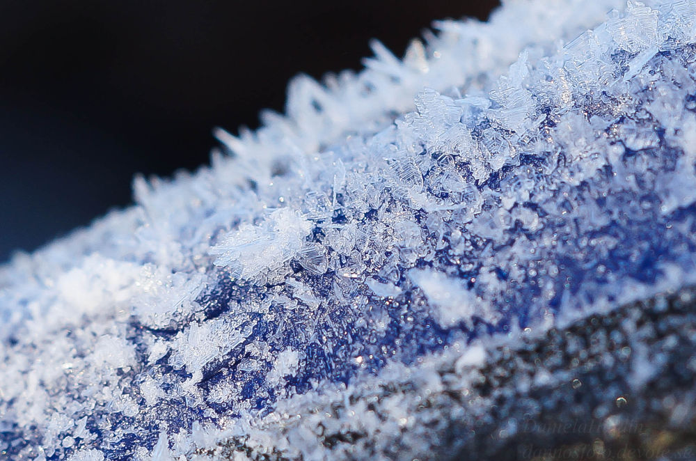 Photo in Macro #ice #macro #snow #winter #cold #white #blue #car #love #nature