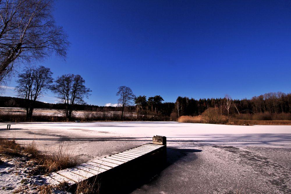 Photo in Random #brick #pond #lake #water #ice #snow #tree #trees