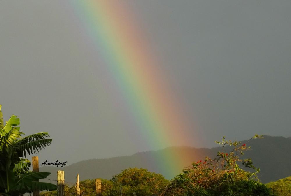 Photo in Nature #rainbow #arco-íris #piquete sp #brasil #brazil #serra da mantiqueira