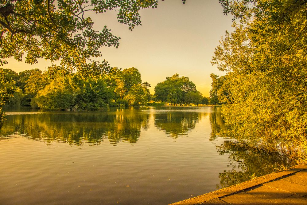 Photo in Landscape #nature #lake #trees