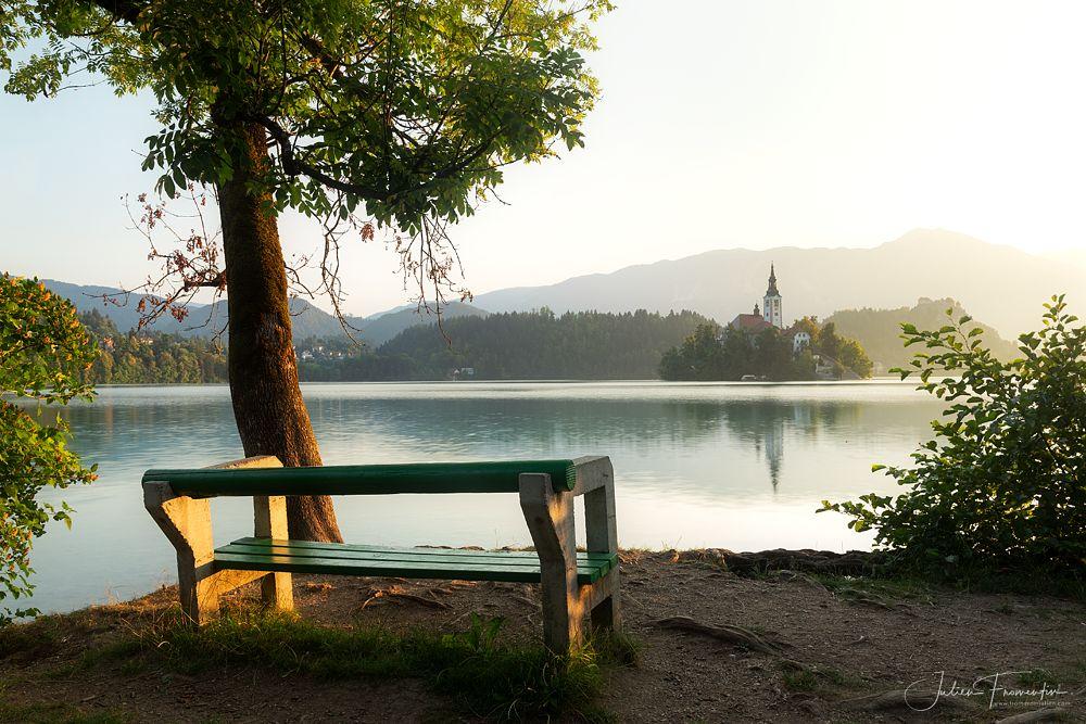 Photo in Landscape #europe #slovenia #lake #bled #morning #sunrise #light #water #peaceful #amazing #beautiful #bench #landscape #tree #nature #travel #tourism #fromentinjulien