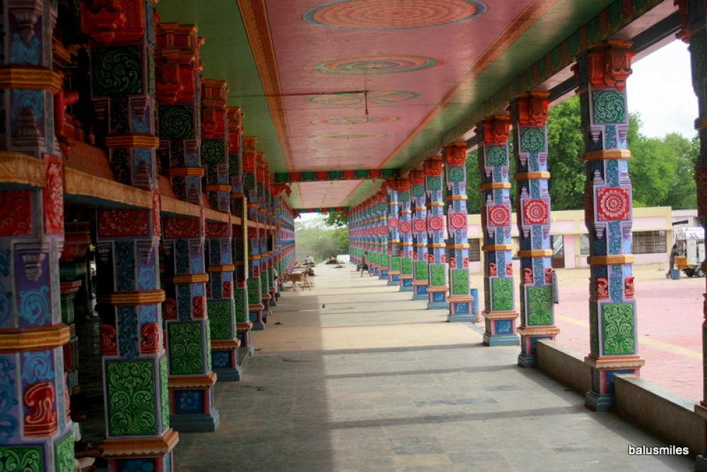 Photo in Random #colour #pillers #temple #tamilnadu #india