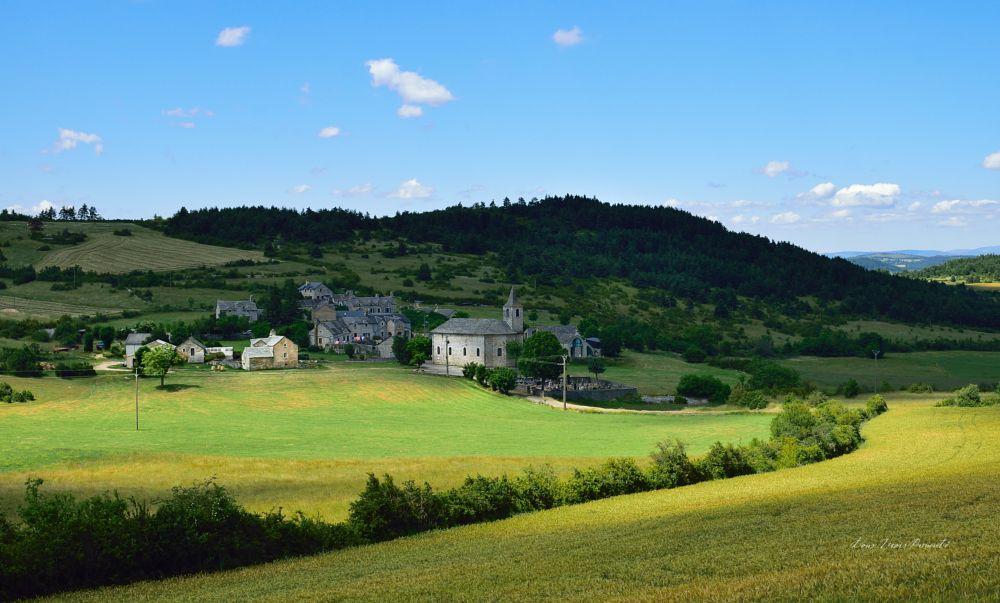 Photo in Landscape #nature #village