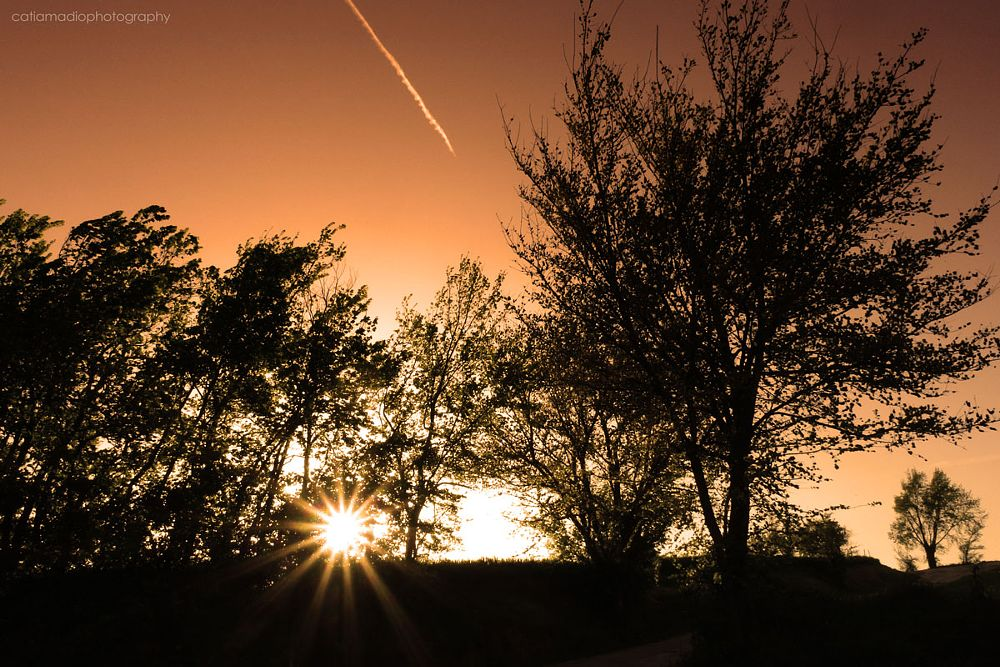 Photo in Nature #sunset #landscape #nature