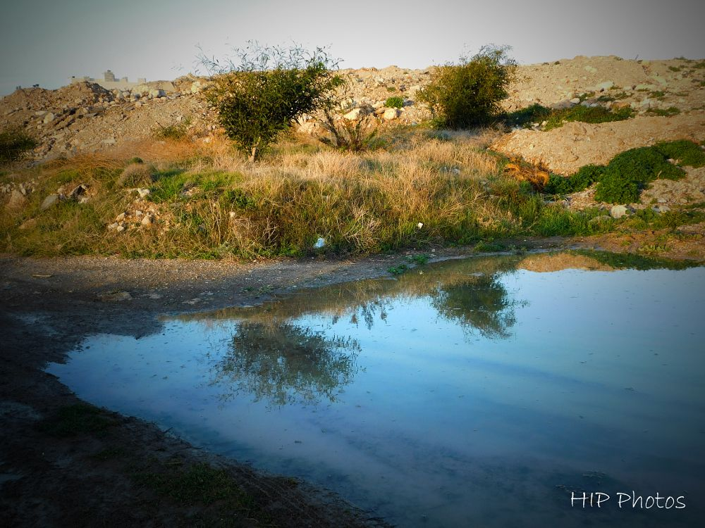 Photo in Landscape #water #reflection
