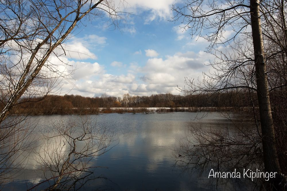 Photo in Landscape #winter #ohio #landscape #photography #clouds #blue #sky #trees