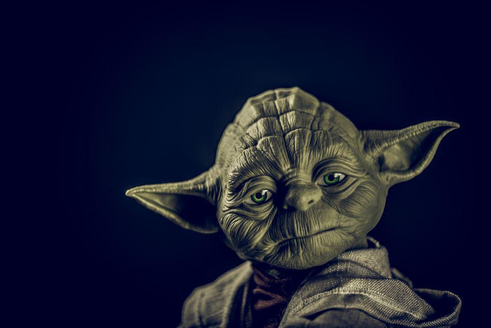 Photo in Portrait #yoda #starwars #character #toy #portrait #still-life #studio #strobist #nikon #d750