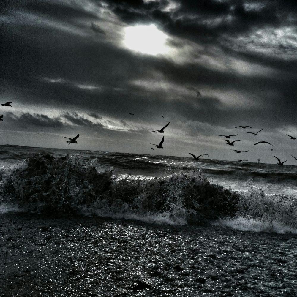 Photo in Landscape #beach #sea #monochrome #eyecandy #drama #sony #xperiaz1 #blackandwhite