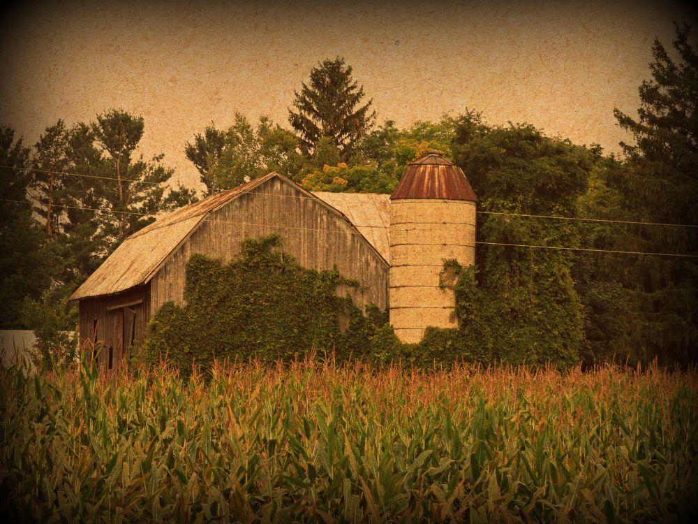 Photo in Rural #barn #farm #michigan #sexy #fantastic #neat