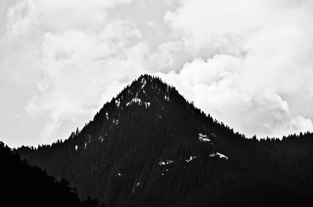 Photo in Black and White #monolith #washington #olympics #olympic mountains #olympic national forest #mountain #black and white #nature #pacific northwest #light of luna photography